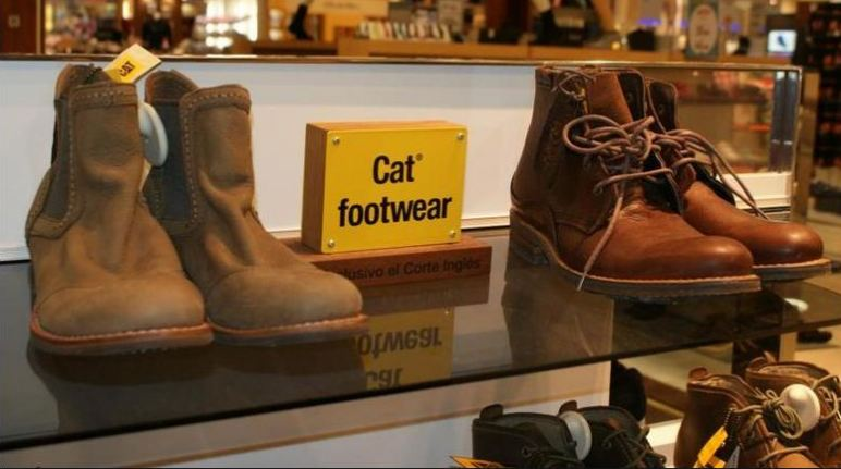 Cat Boots Survey