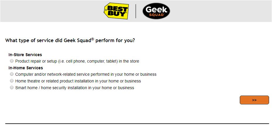 Geek Squad Survey