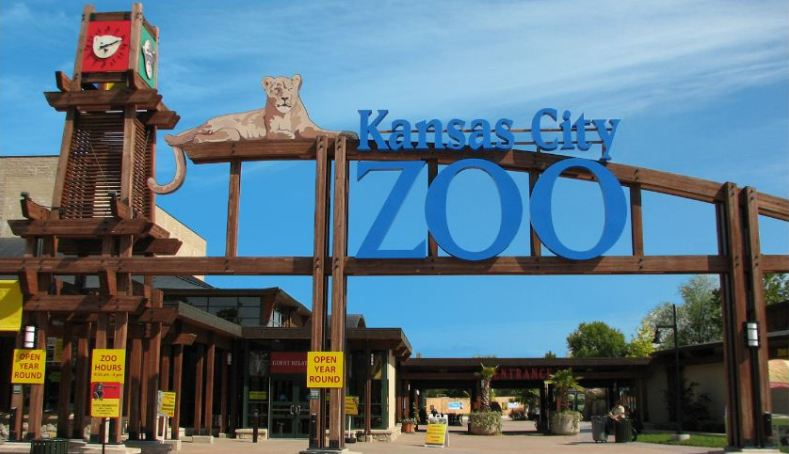 Kansas City Zoo Survey